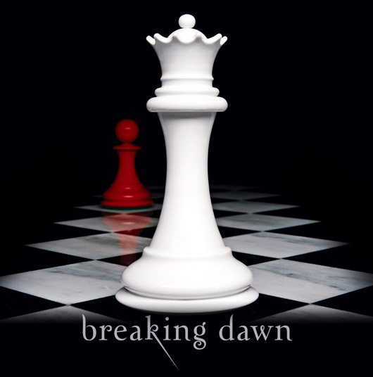 Breaking Dawn Buch Cover
