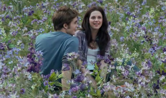 Robert-Pattinson-Kristen-Stewart-Meadow_dvd