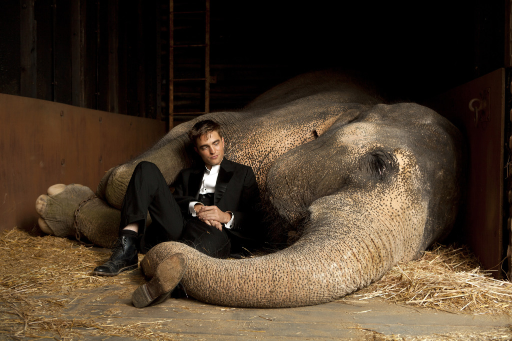 water-for-elephants-promo-hq1
