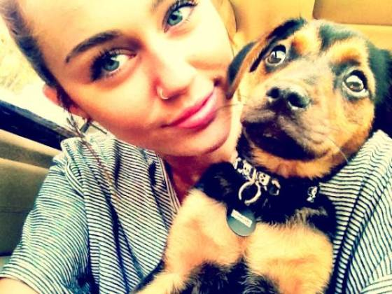 Miley Cyrus Happy Twitpic Mai Miley Cyrus: Aufregung um altes Piercing