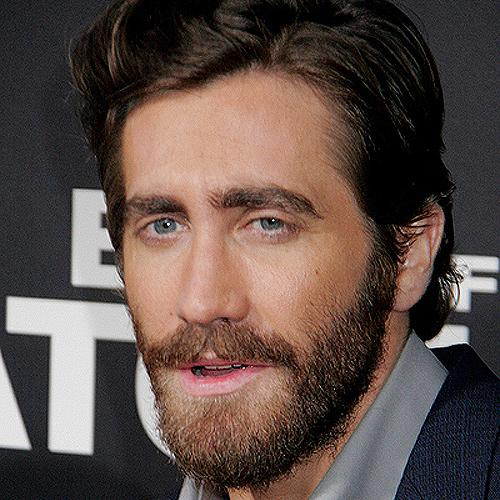 Jake Gyllenhaal End Of Watch Premiere Jake Gyllenhaal will Rolle in Fifty Shades Of Grey