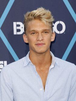 Cody-Simpson-Young-Hollywood-Awards-2014-250x333