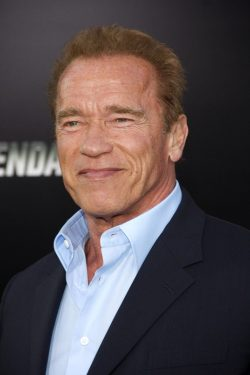 Arnold-Schwarzenegger-The-Expendables-Premiere-Los-Angeles-250x375