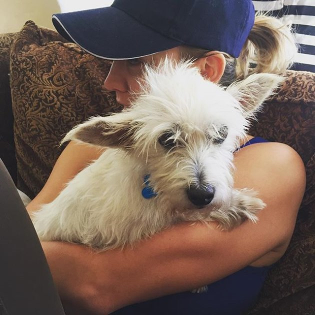 Kaley-Cuoco-Hund-Chester-2