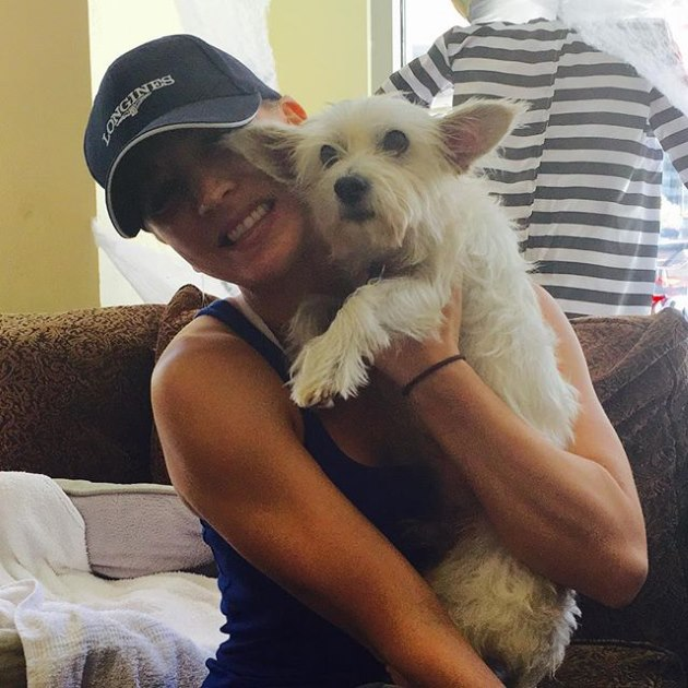 Kaley-Cuoco-Hund-Chester