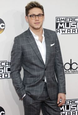 Niall-Horan-American-Music-Awards-2016-250x368
