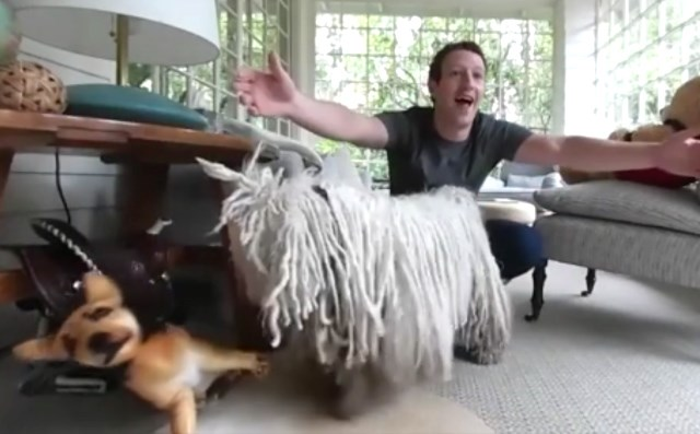 Mark-Zuckerberg-Hund-Beast