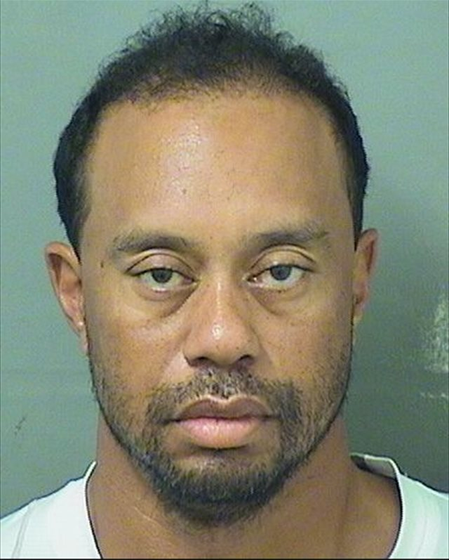 Tiger-Woods-Mug-Shot