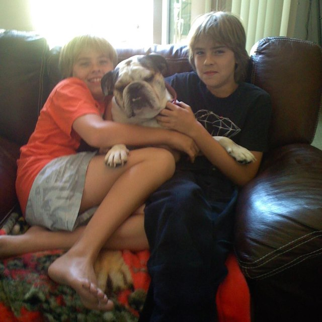 Dylan-Cole-Sprouse-Hund-Bubba
