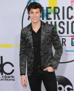 Shawn-Mendes-American-Music-Awards-250x307